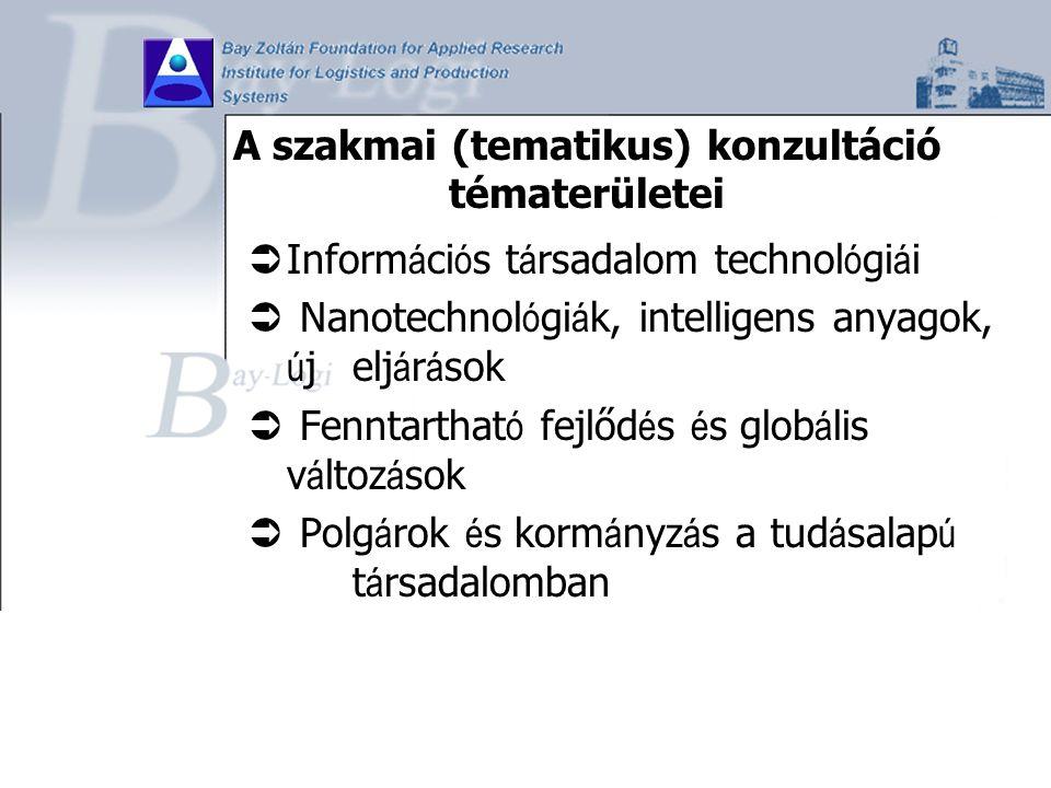 A szakmai (tematikus) konzultáció tématerületei