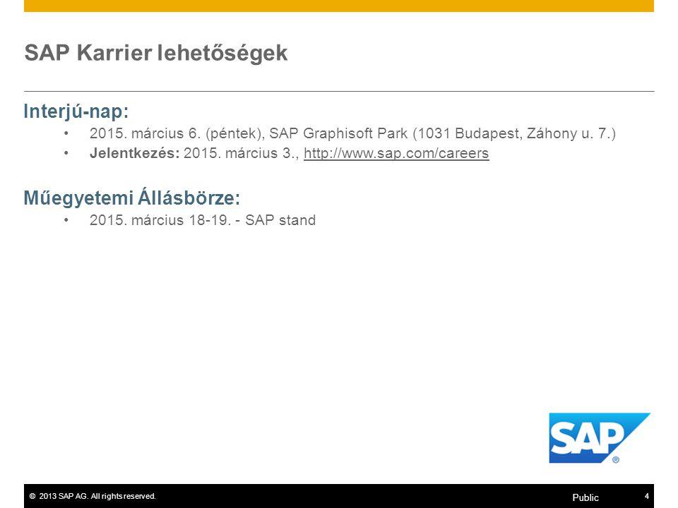 SAP Karrier lehetőségek