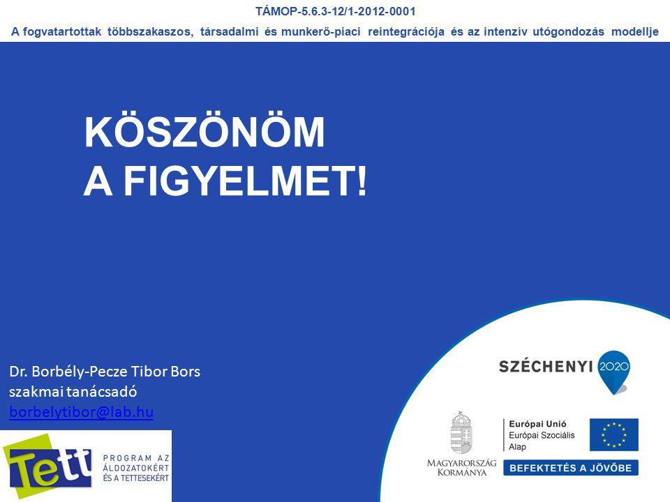 KÖSZÖNÖM A FIGYELMET! Dr. Borbély-Pecze Tibor Bors szakmai tanácsadó