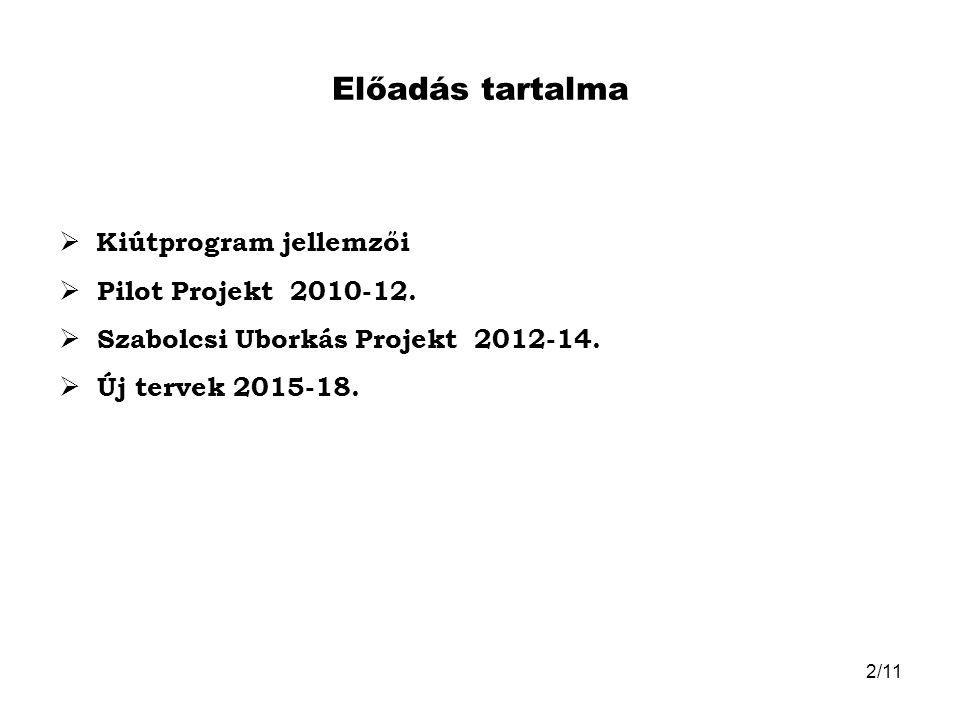 Előadás tartalma Kiútprogram jellemzői Pilot Projekt 2010-12.
