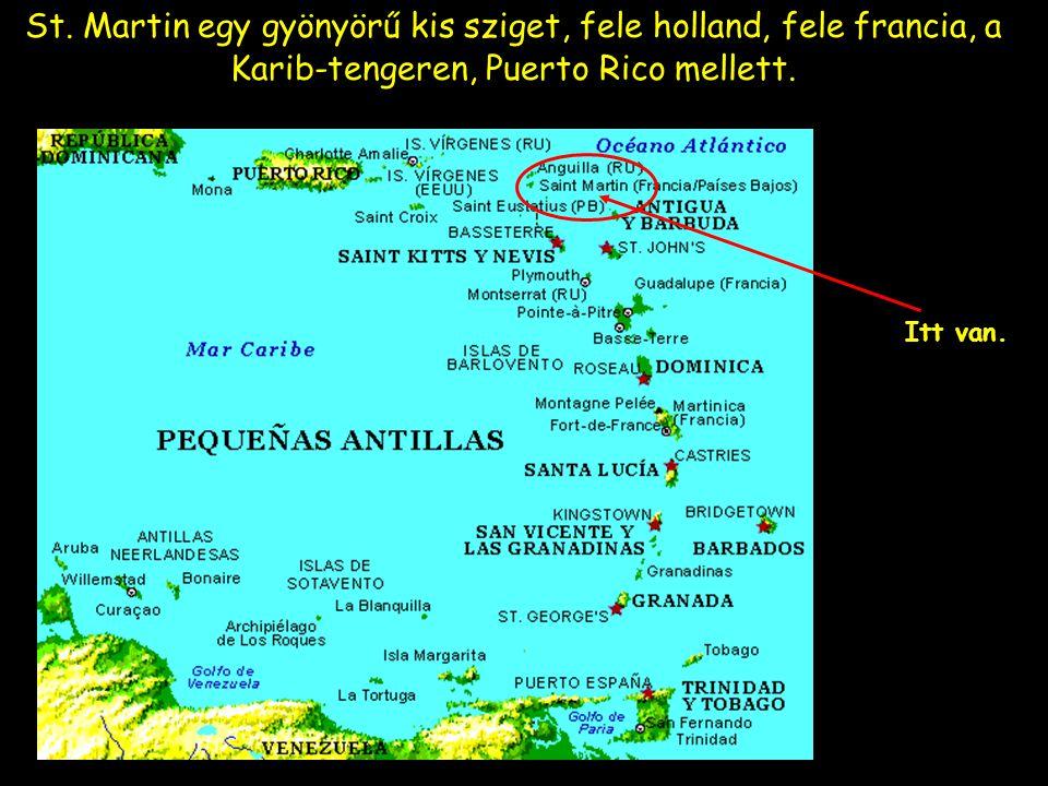 St. Martin egy gyönyörű kis sziget, fele holland, fele francia, a Karib-tengeren, Puerto Rico mellett.