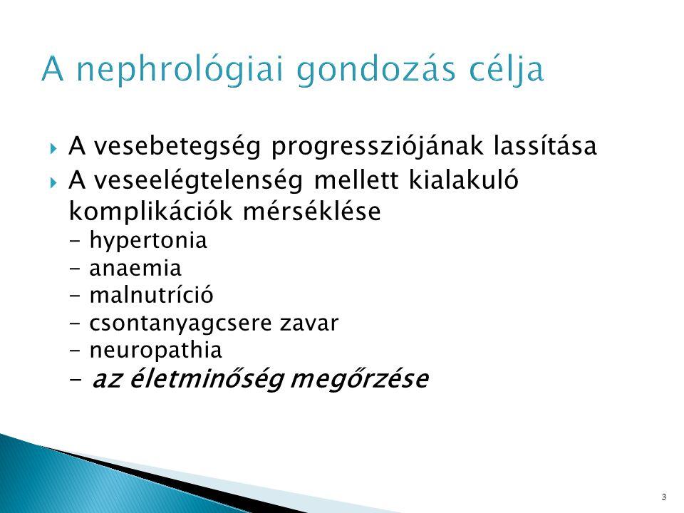 A nephrológiai gondozás célja