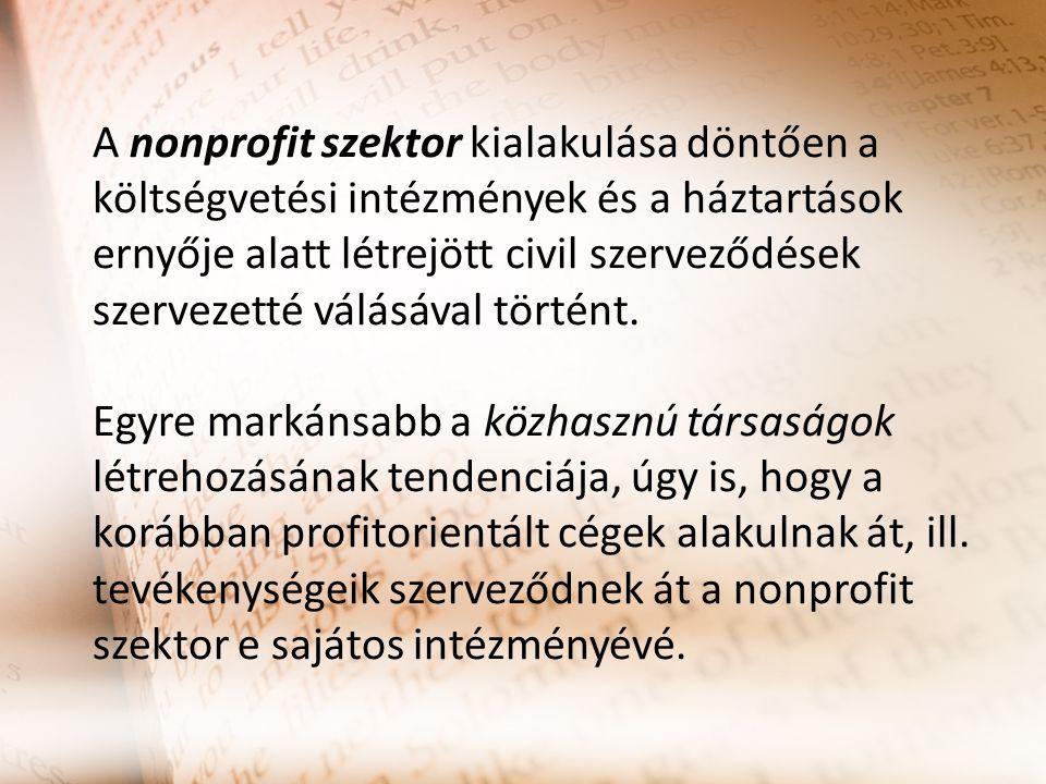 A nonprofit szektor kialakulása döntően a költségvetési intézmények és a háztartások ernyője alatt létrejött civil szerveződések szervezetté válásával történt.
