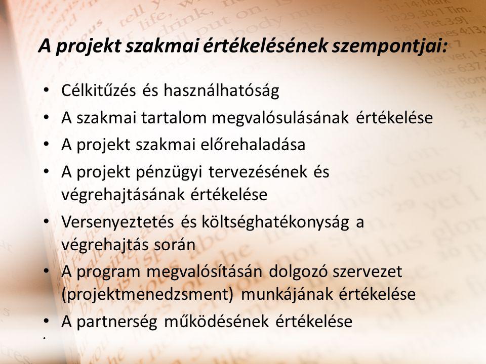 A projekt szakmai értékelésének szempontjai: