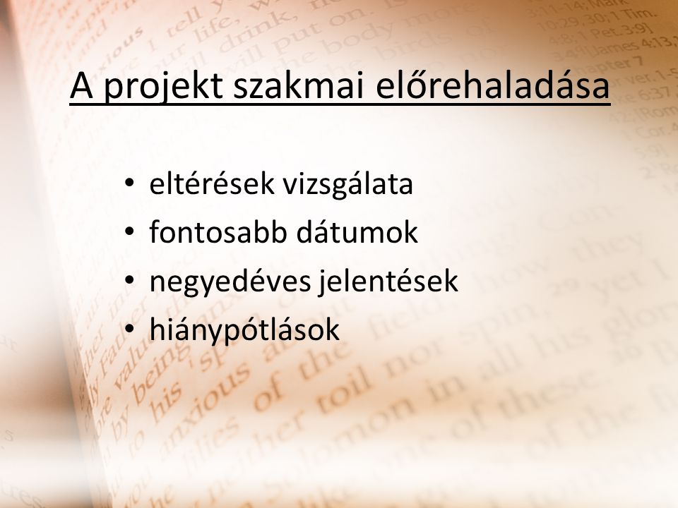 A projekt szakmai előrehaladása