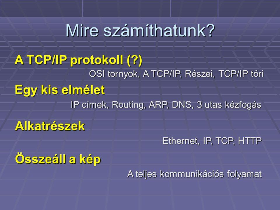Mire számíthatunk A TCP/IP protokoll ( ) Egy kis elmélet Alkatrészek