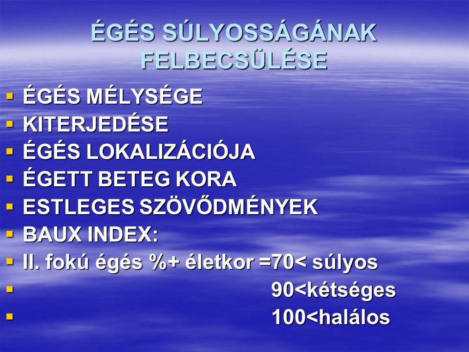 ÉGÉS SÚLYOSSÁGÁNAK FELBECSÜLÉSE