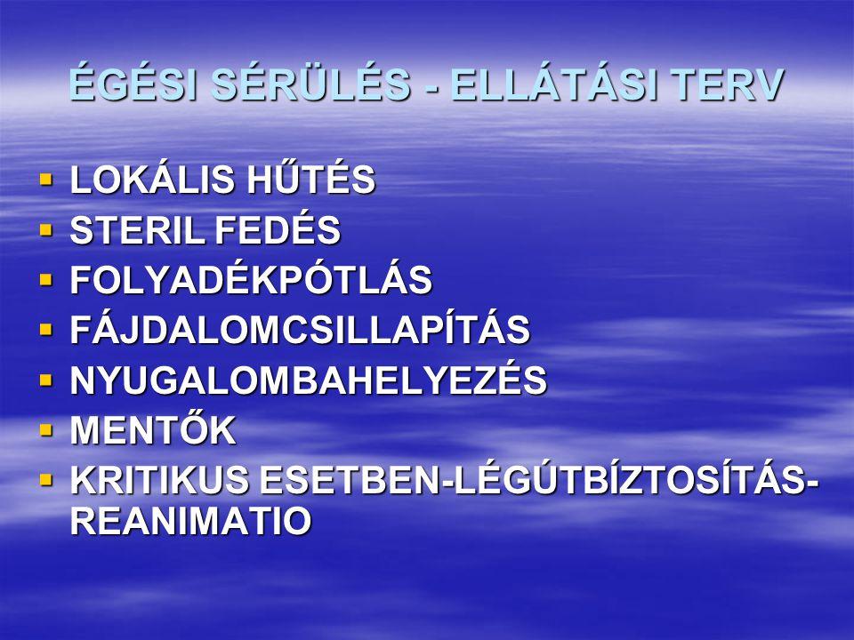 ÉGÉSI SÉRÜLÉS - ELLÁTÁSI TERV