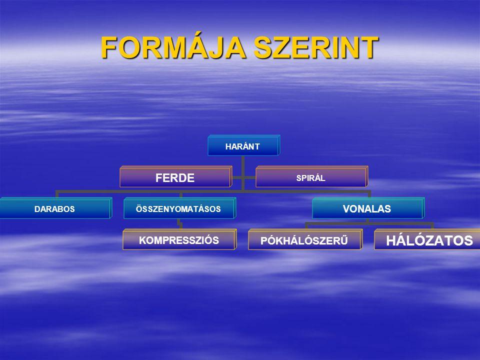 FORMÁJA SZERINT