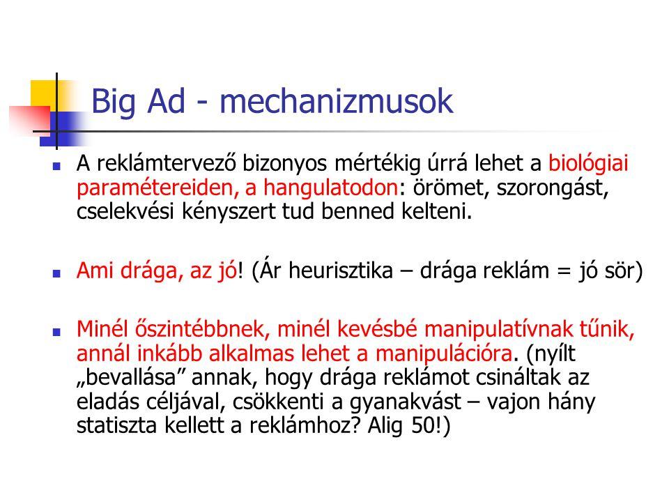 Big Ad - mechanizmusok