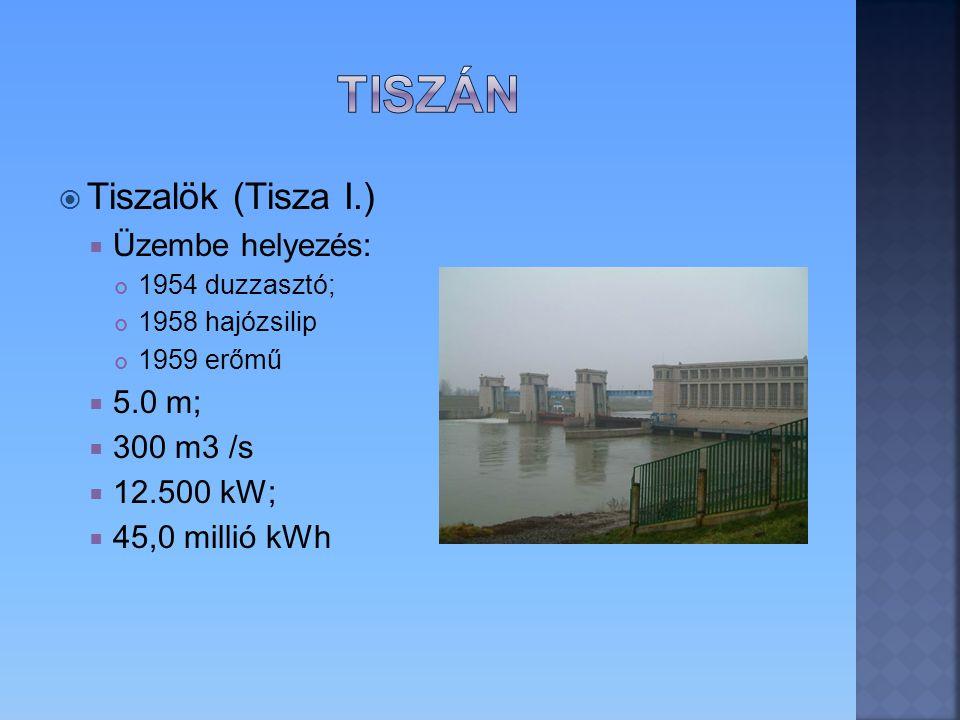 Tiszán Tiszalök (Tisza I.) Üzembe helyezés: 5.0 m; 300 m3 /s