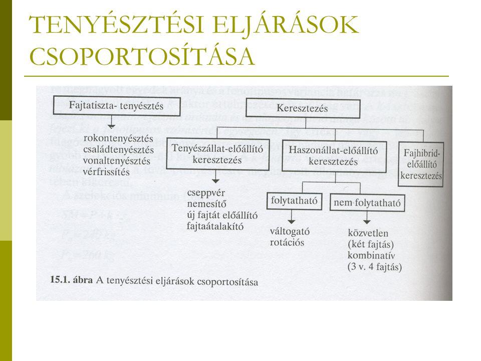 TENYÉSZTÉSI ELJÁRÁSOK CSOPORTOSÍTÁSA