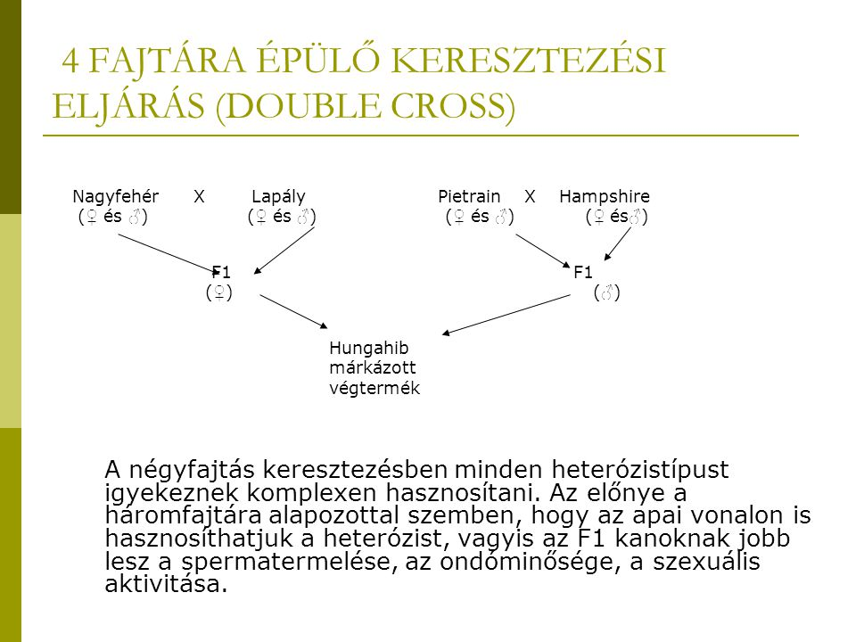 4 FAJTÁRA ÉPÜLŐ KERESZTEZÉSI ELJÁRÁS (DOUBLE CROSS)