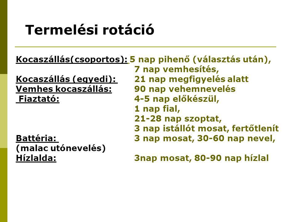 Termelési rotáció Kocaszállás(csoportos): 5 nap pihenő (választás után), 7 nap vemhesítés, Kocaszállás (egyedi): 21 nap megfigyelés alatt.