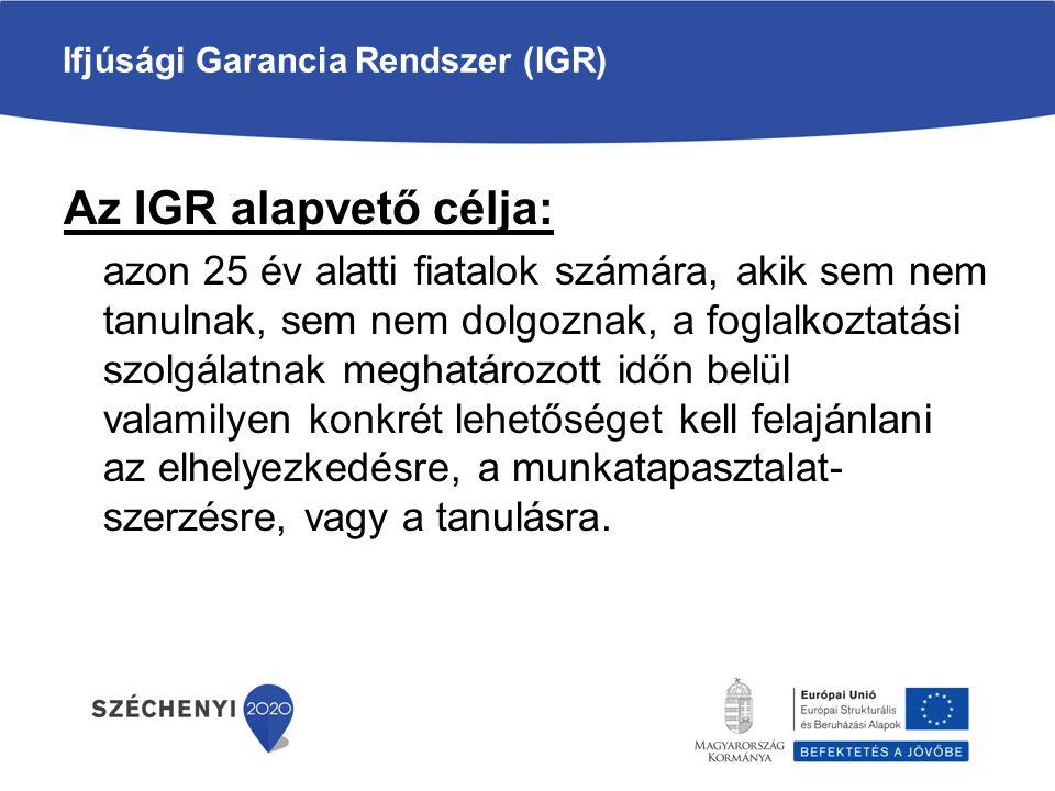 Ifjúsági Garancia Rendszer (IGR)