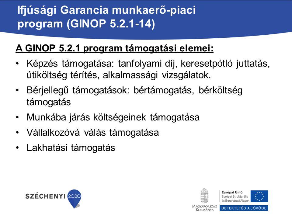 Ifjúsági Garancia munkaerő-piaci program (GINOP 5.2.1-14)