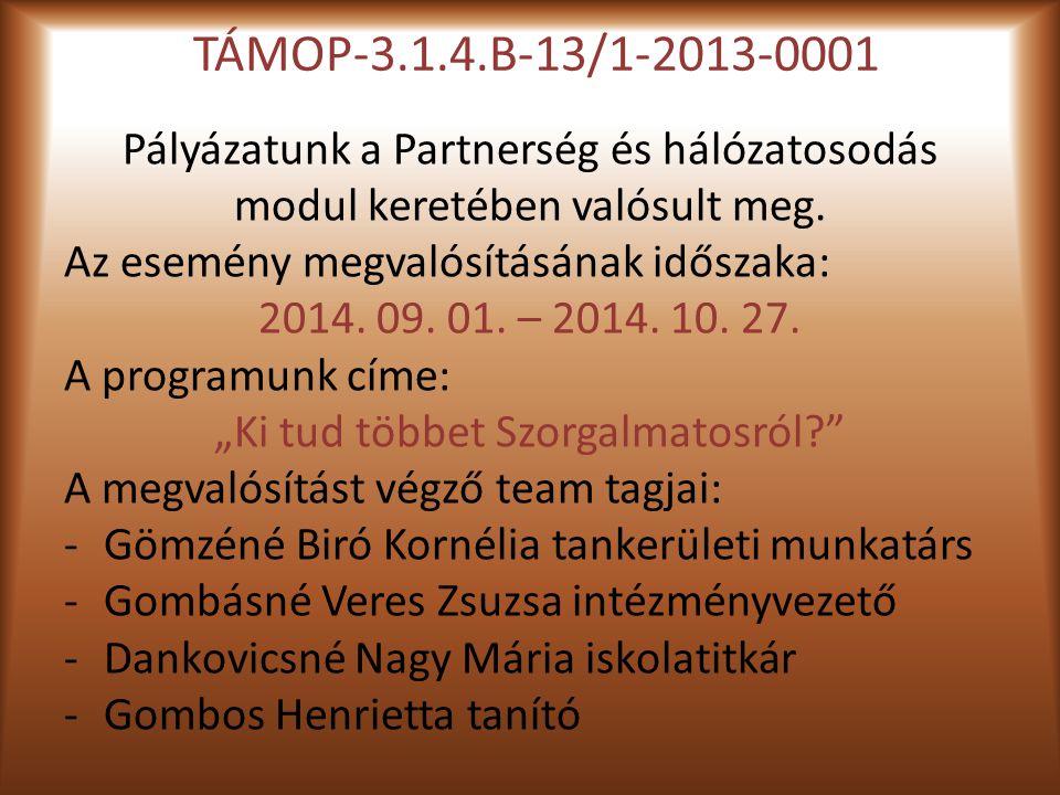 TÁMOP-3.1.4.B-13/1-2013-0001 Pályázatunk a Partnerség és hálózatosodás