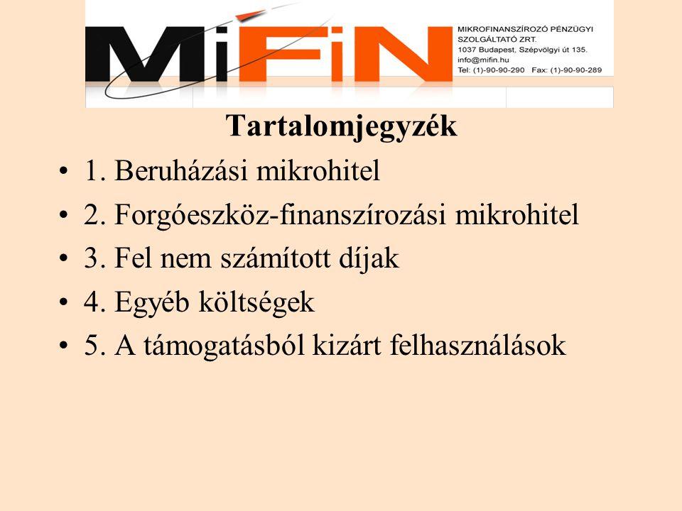 Tartalomjegyzék 1. Beruházási mikrohitel