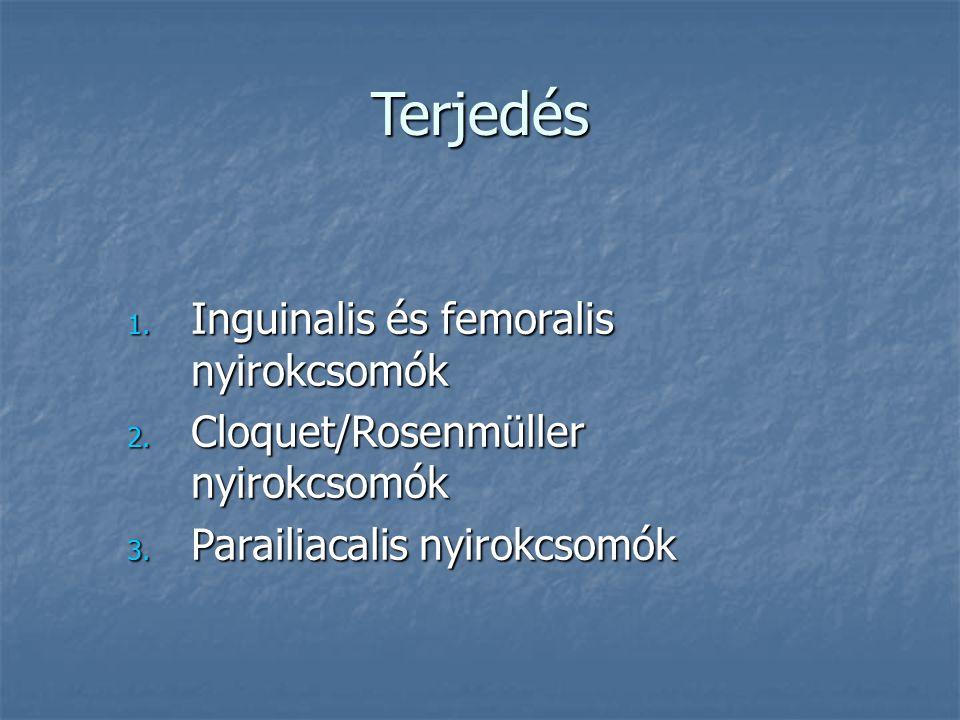 Terjedés Inguinalis és femoralis nyirokcsomók