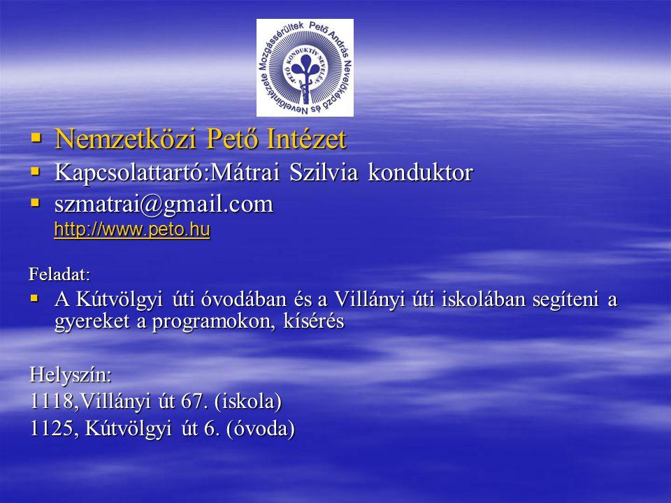 Nemzetközi Pető Intézet