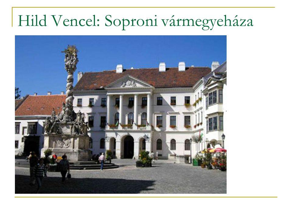Hild Vencel: Soproni vármegyeháza
