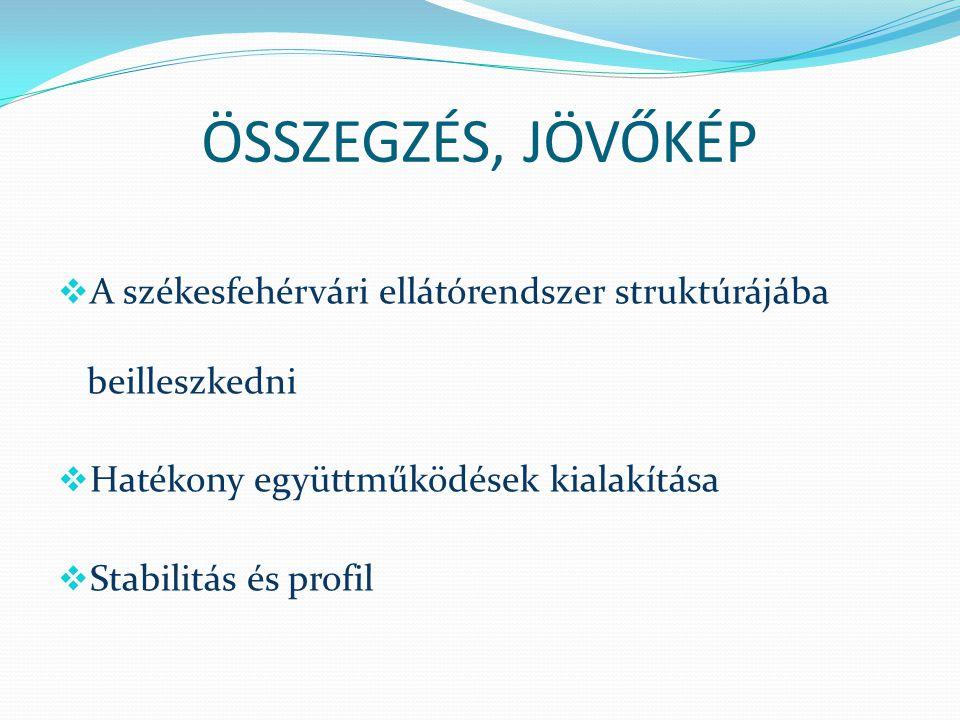 ÖSSZEGZÉS, JÖVŐKÉP A székesfehérvári ellátórendszer struktúrájába beilleszkedni. Hatékony együttműködések kialakítása.