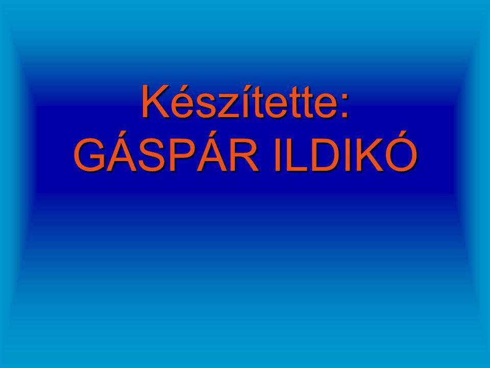 Készítette: GÁSPÁR ILDIKÓ