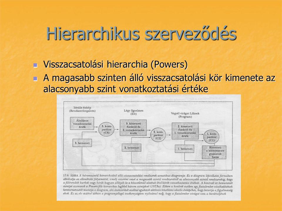 Hierarchikus szerveződés