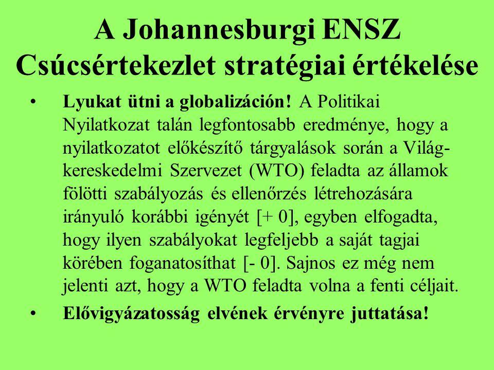 A Johannesburgi ENSZ Csúcsértekezlet stratégiai értékelése