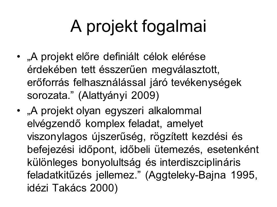 A projekt fogalmai
