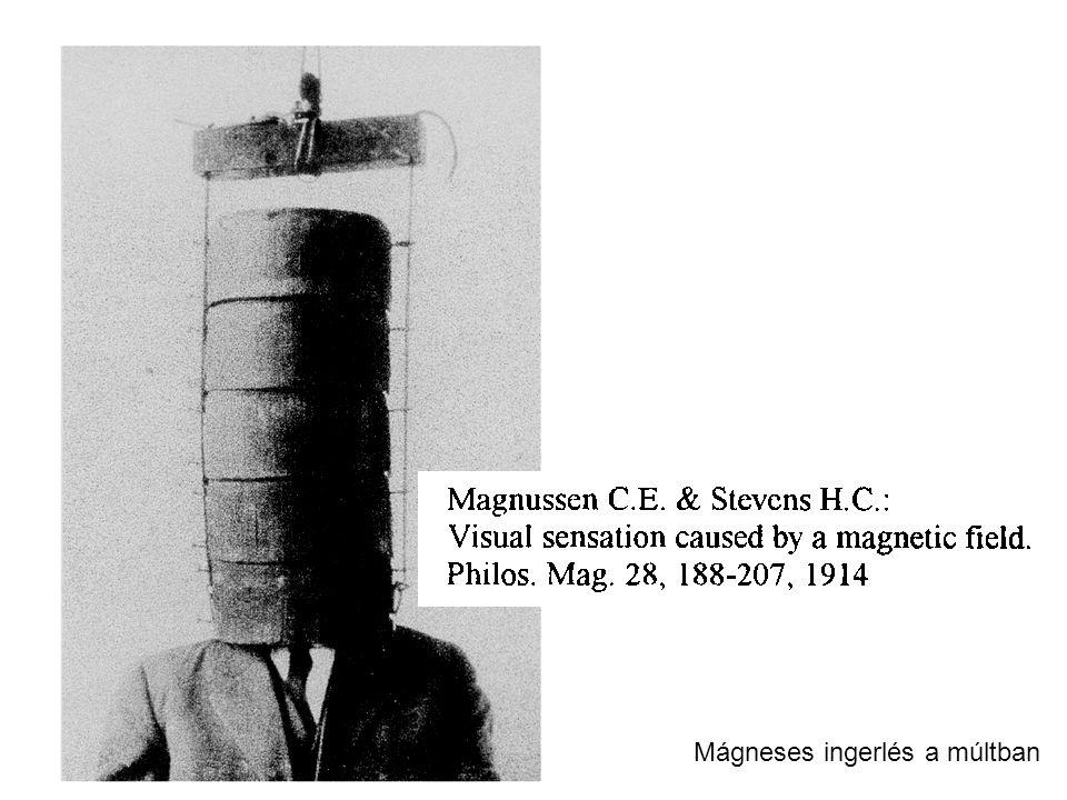 Mágneses ingerlés a múltban