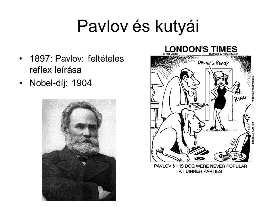 Pavlov és kutyái 1897: Pavlov: feltételes reflex leírása