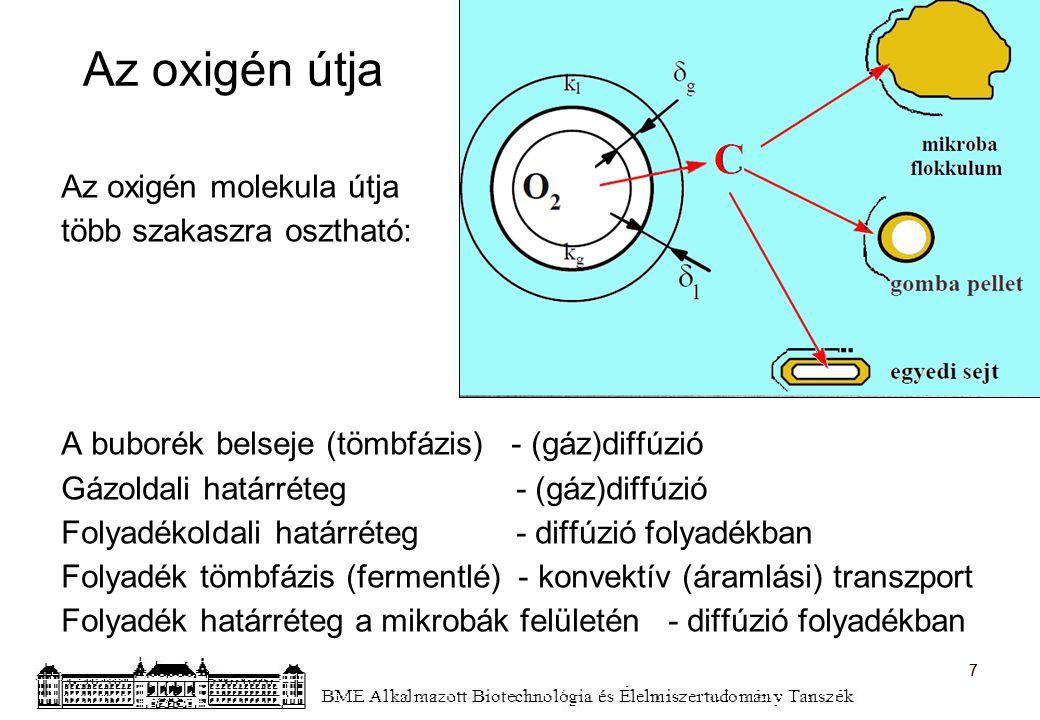 Az oxigén útja