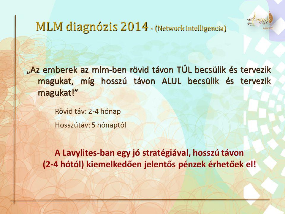 MLM diagnózis 2014 - (Network intelligencia)