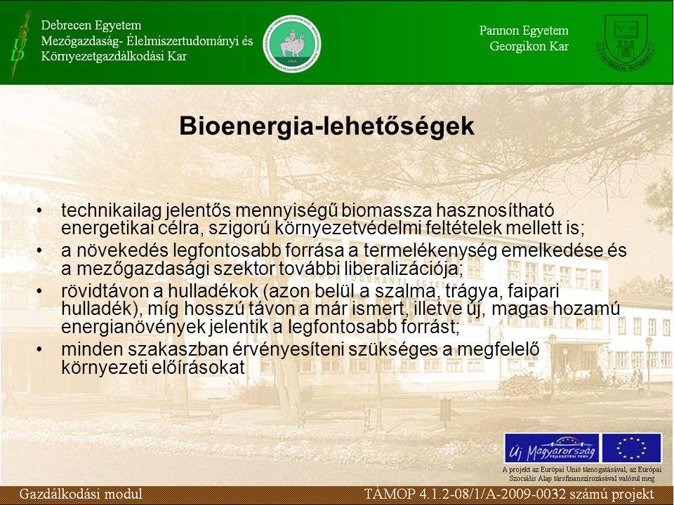Bioenergia-lehetőségek