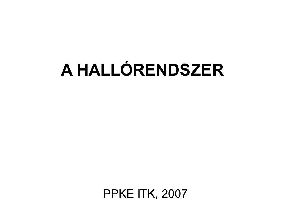A HALLÓRENDSZER PPKE ITK, 2007