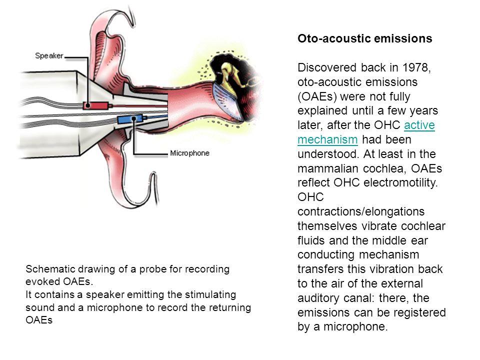 Oto-acoustic emissions