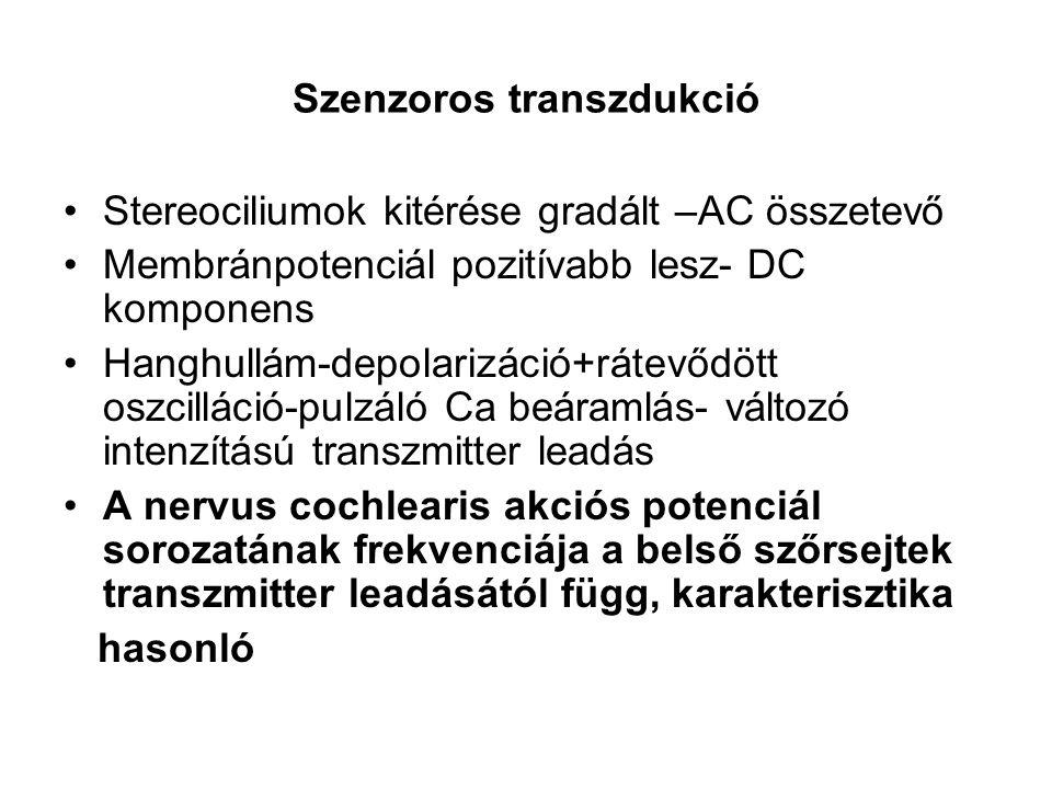Szenzoros transzdukció