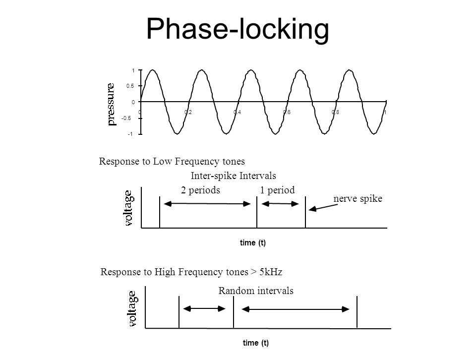 Phase-locking Inter-spike Intervals Response to Low Frequency tones