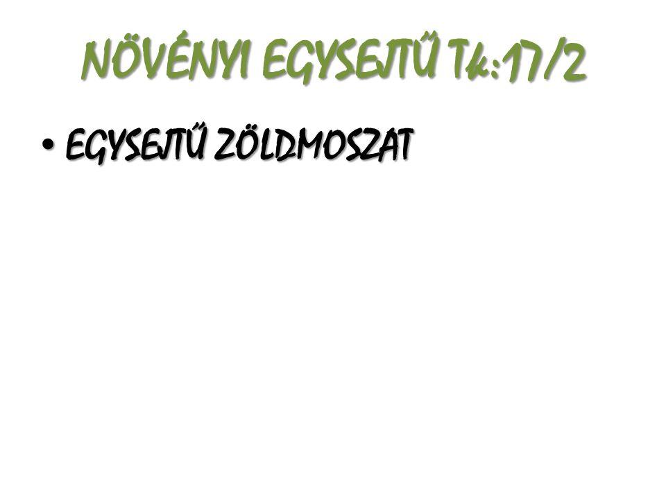 NÖVÉNYI EGYSEJTŰ Tk:17/2 EGYSEJTŰ ZÖLDMOSZAT