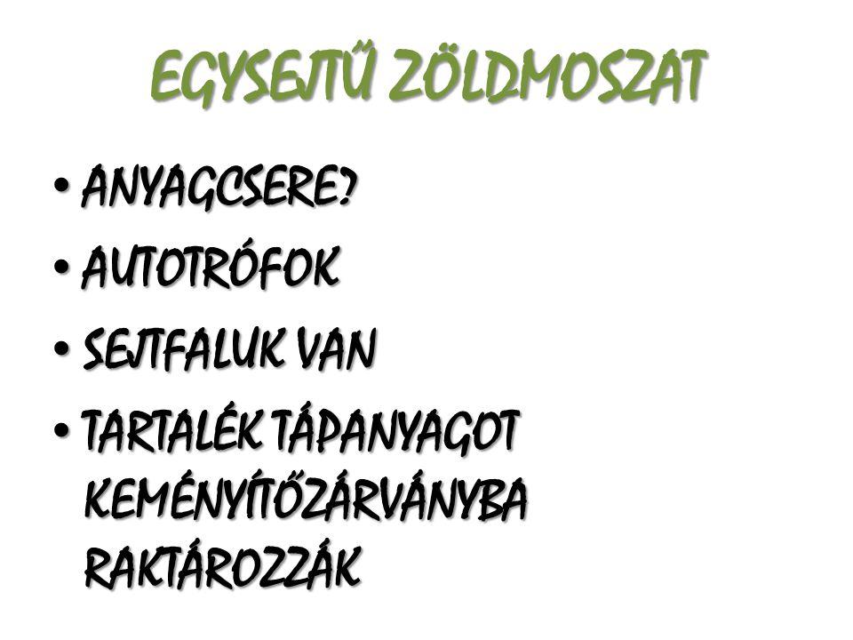 EGYSEJTŰ ZÖLDMOSZAT ANYAGCSERE AUTOTRÓFOK SEJTFALUK VAN