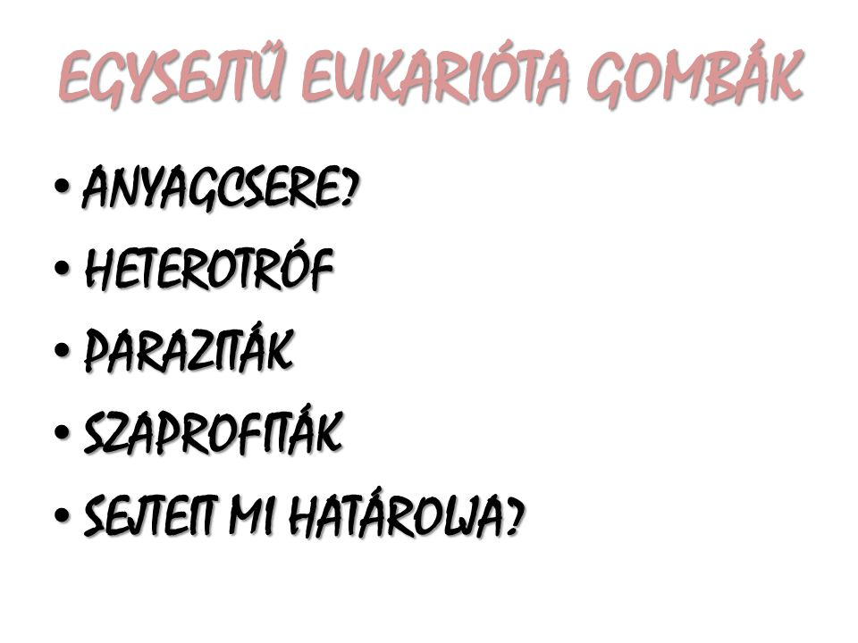 EGYSEJTŰ EUKARIÓTA GOMBÁK