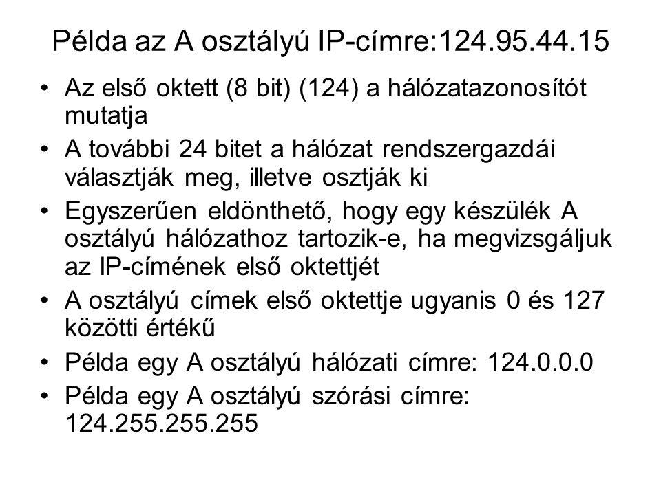 Példa az A osztályú IP-címre:124.95.44.15