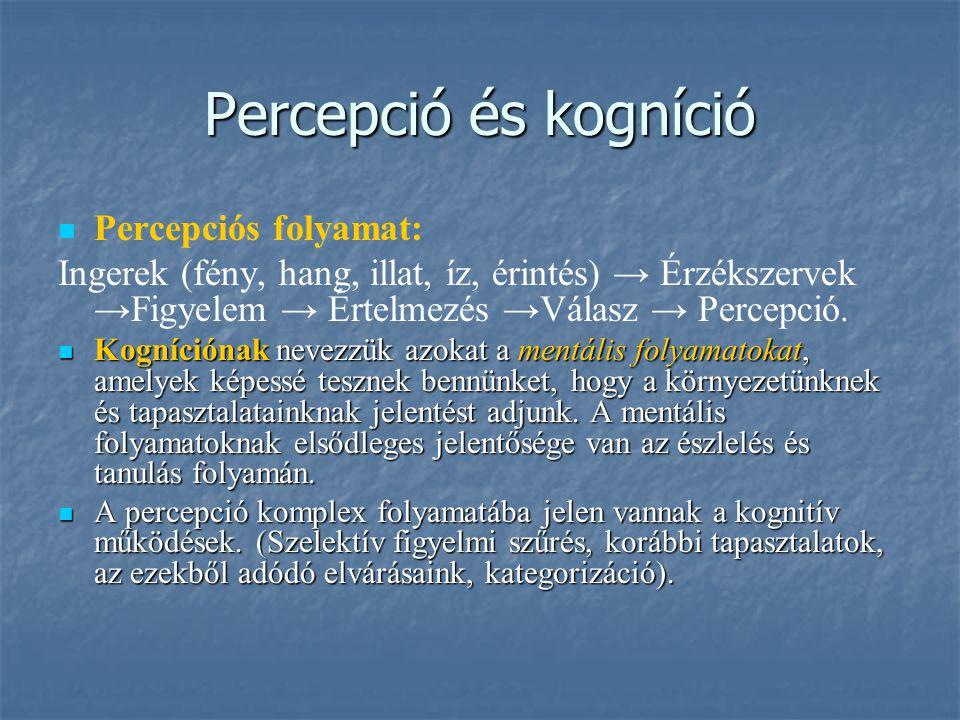 Percepció és kogníció Percepciós folyamat: