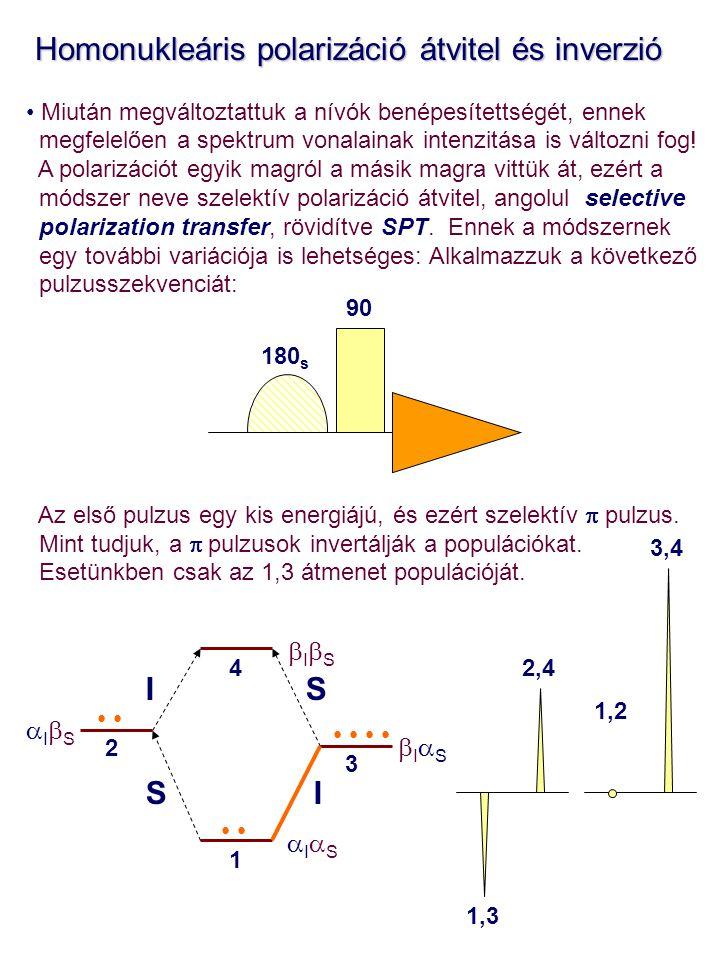Homonukleáris polarizáció átvitel és inverzió