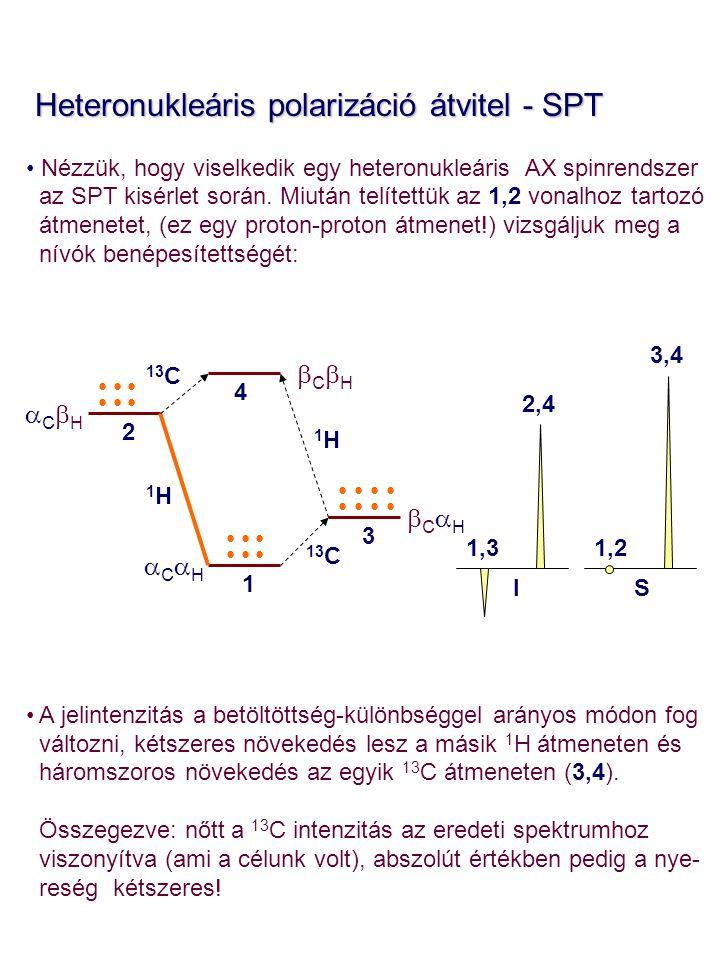 Heteronukleáris polarizáció átvitel - SPT