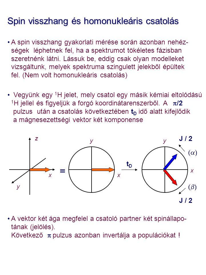 Spin visszhang és homonukleáris csatolás