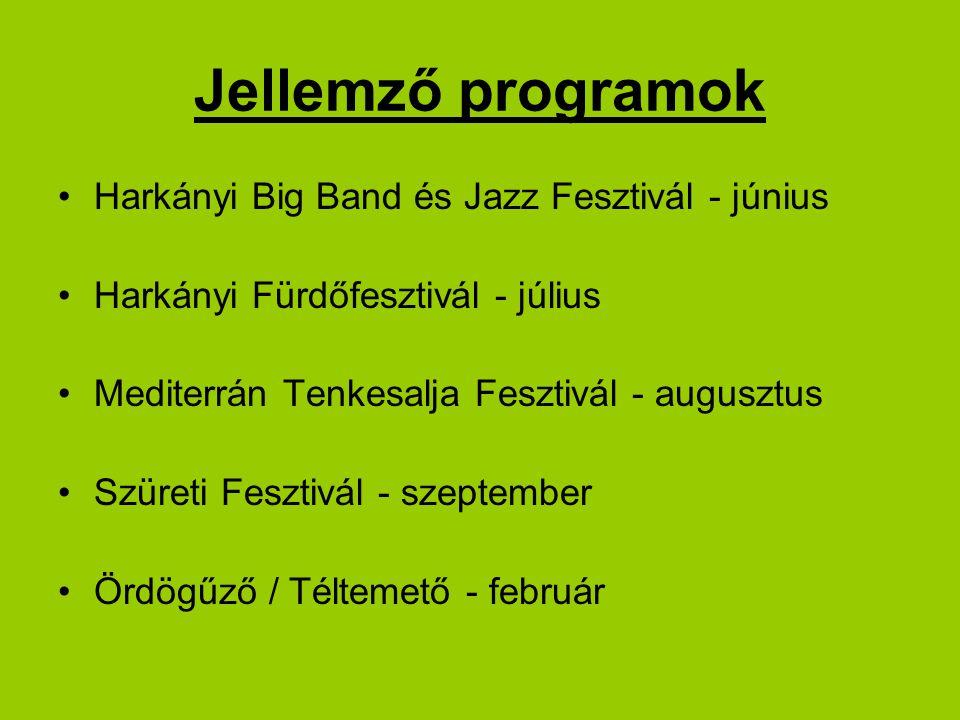 Jellemző programok Harkányi Big Band és Jazz Fesztivál - június