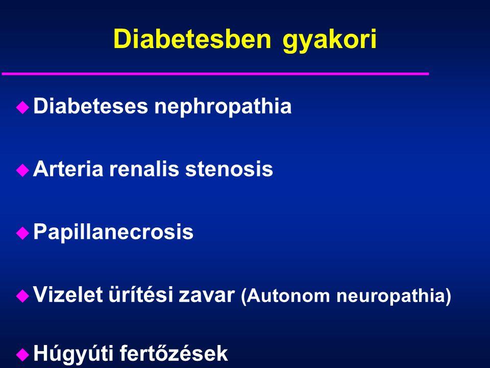 Diabetesben gyakori Diabeteses nephropathia Arteria renalis stenosis
