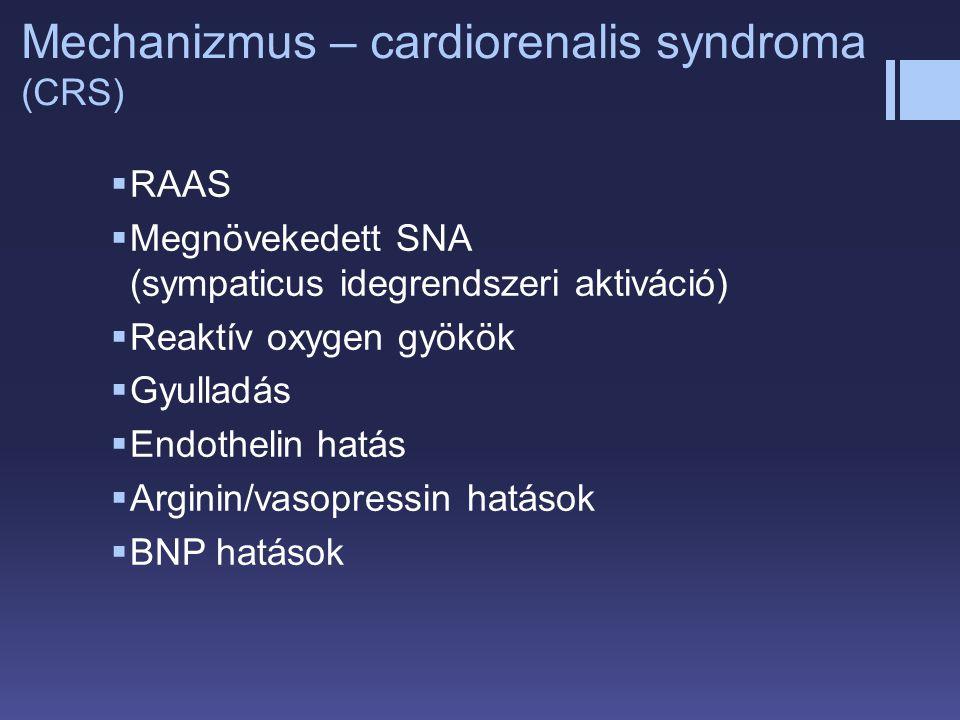 Mechanizmus – cardiorenalis syndroma (CRS)